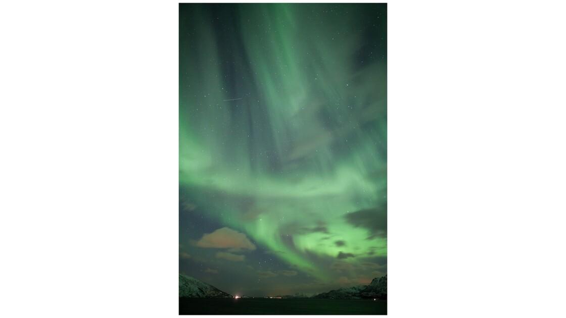 Aurore boréale sur les îles Lofoten