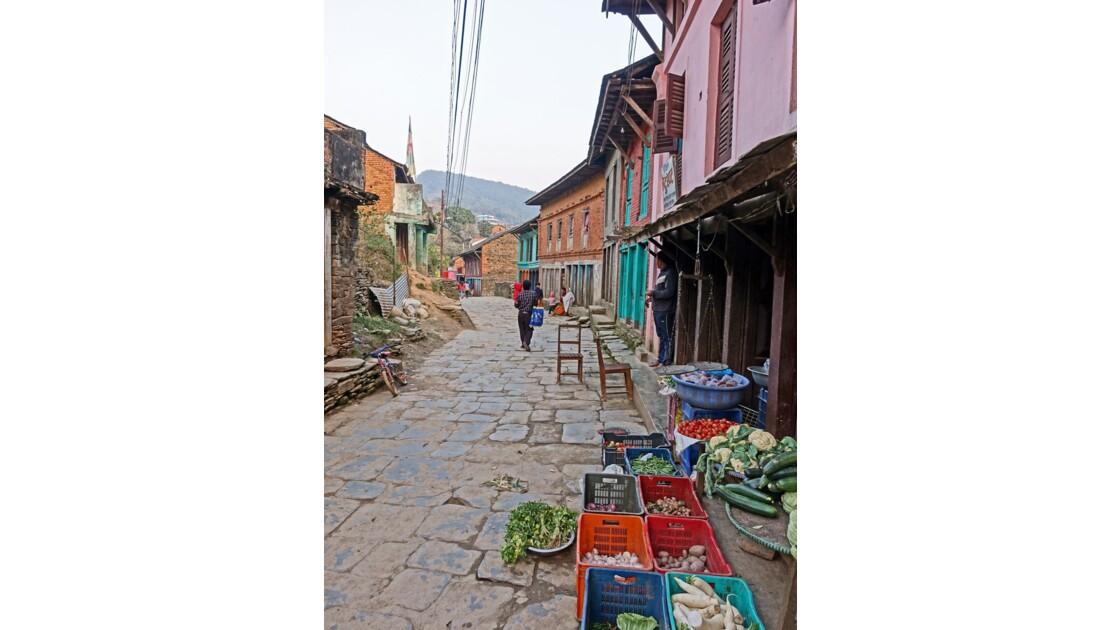 Népal Bandipur 2
