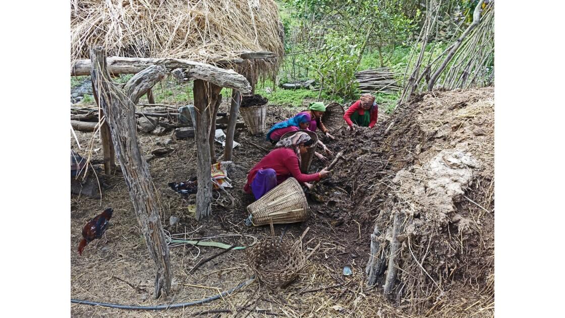 Népal Bandipur Trail Village près de la Prithvi Highway 10