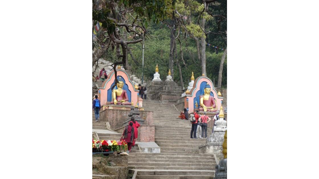 Népal Bouddha à l'entrée de Swayambunath 4