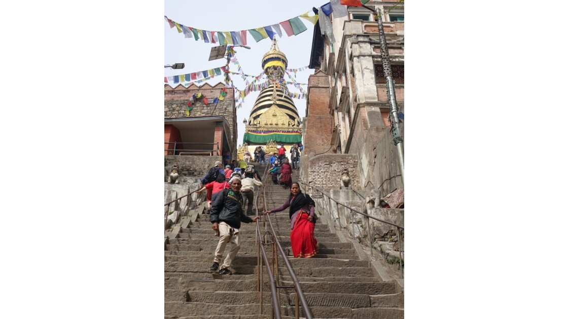 Népal Les 365 marches de Swayambunath 1