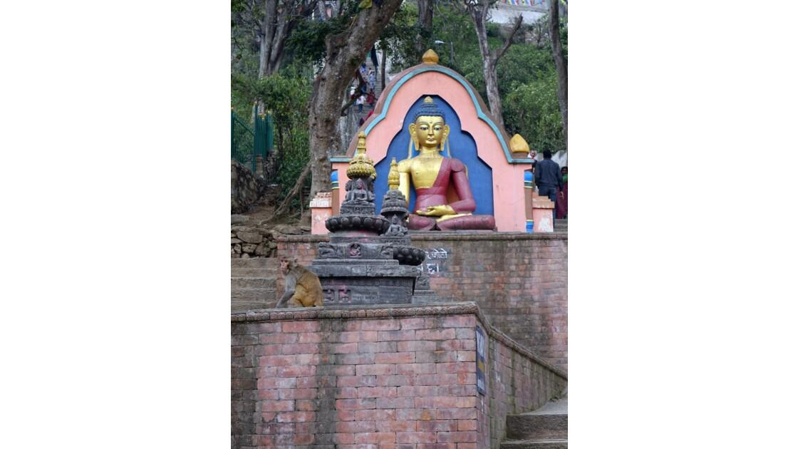 Népal Swayambunath le singe et le Bouddha