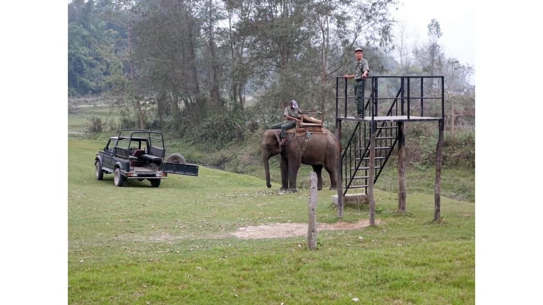 Népal Parc de Chitwan En attendant les touristes