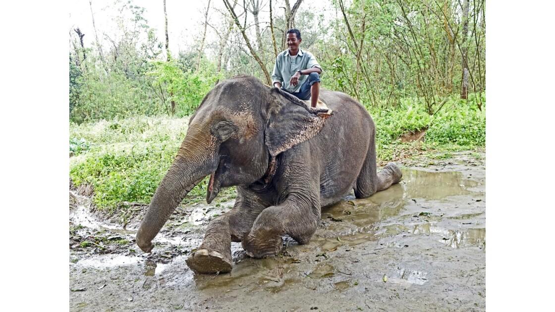 Népal Parc de Chitwan Démonstration 1