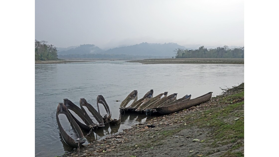Népal Parc de Chitwan Rivière Rapti 1