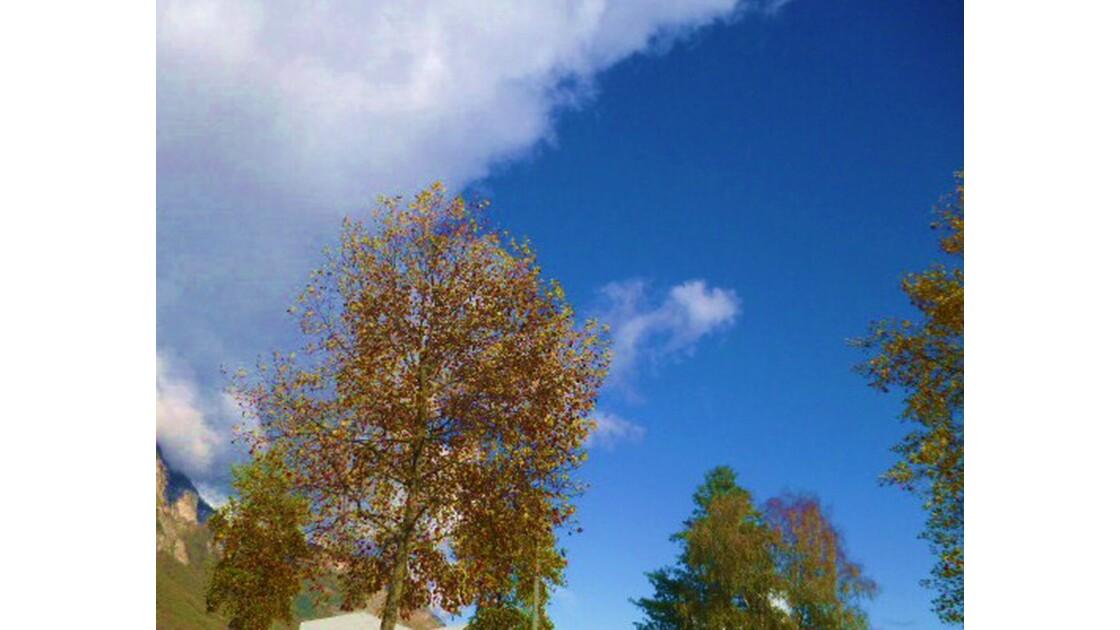 Rêves Bleu azur d'un Arbre en Automne