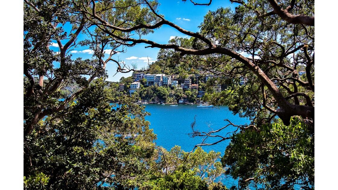 Sydney côté nature