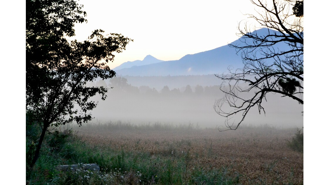 brouillard et soleil sur le pays Dignois