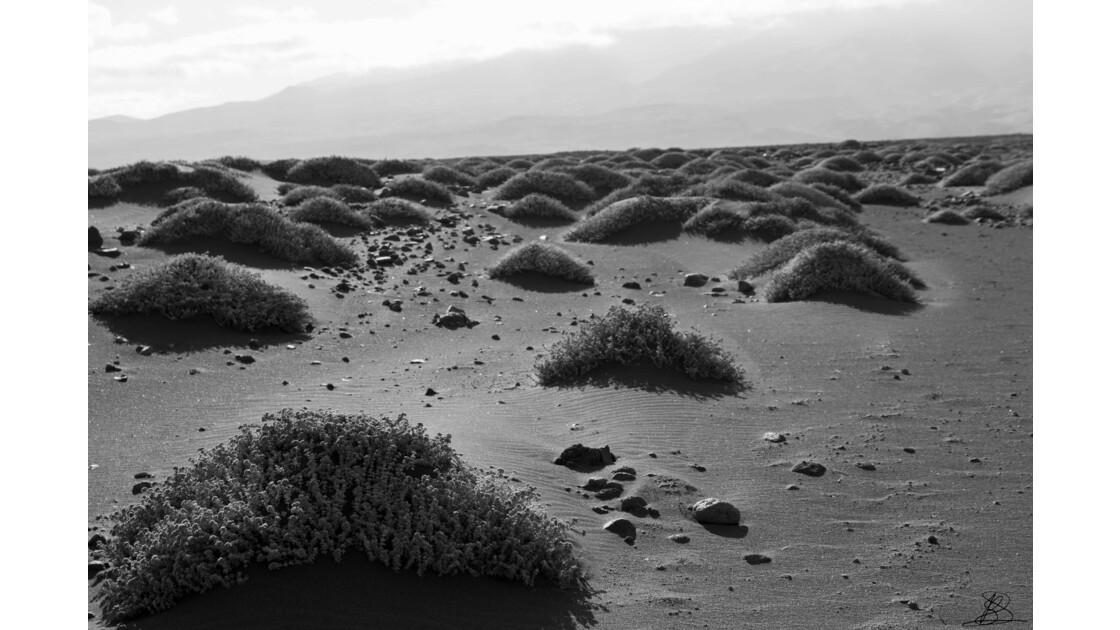 Relief de sable