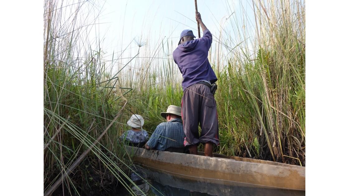 Botswana Okavango mokoro sur l'île Pépère 4