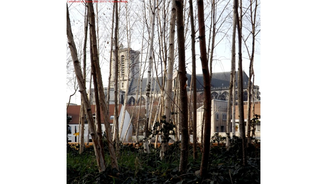 Cathédrale Saint-Pierre-et-Saint-Paul de Troyes