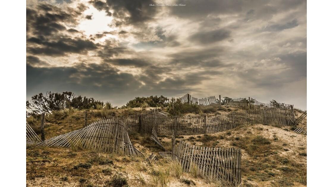 Cordon dunaire