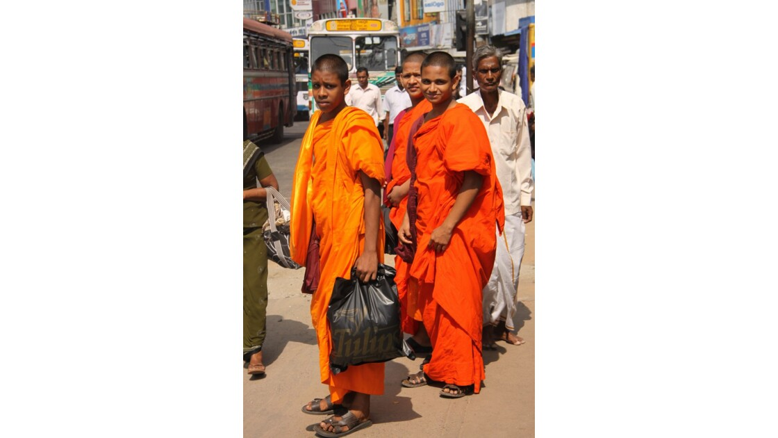 moines Sri Lankais