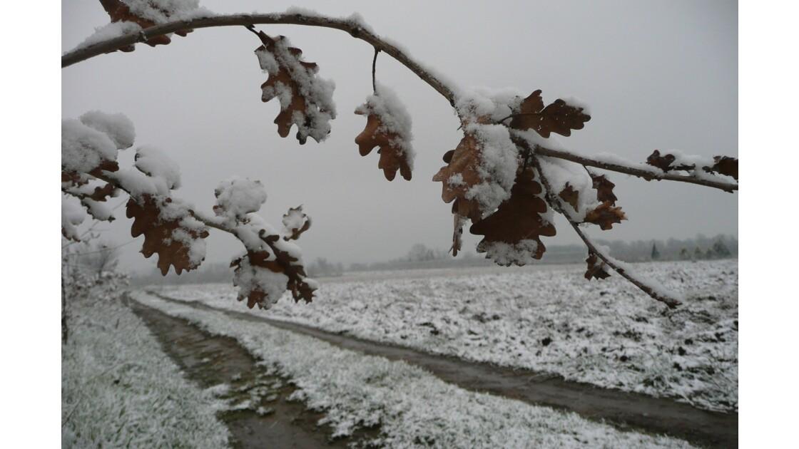 ballade sous la neige