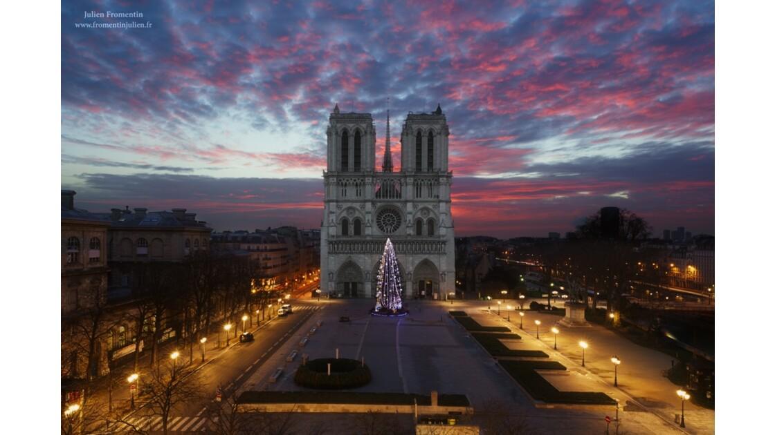 Cathédrale Notre-Dame de Paris, Noel 2014