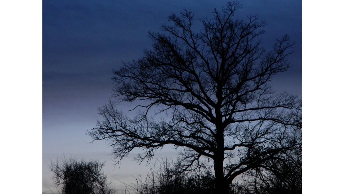 Crépuscule en Bourgogne