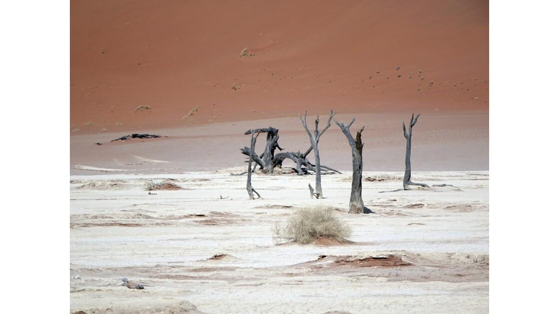 Namibie Dead Vlei 6