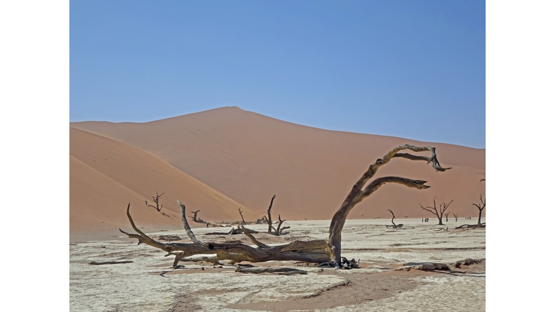 Namibie Dead Vlei 7