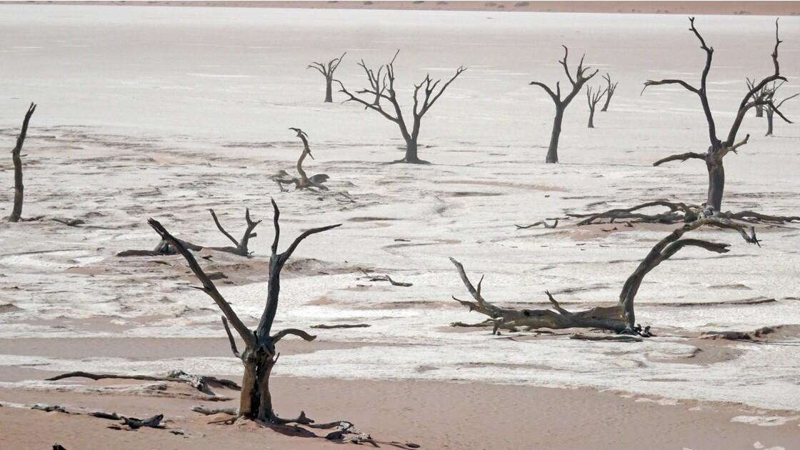 Namibie Dead Vlei 9