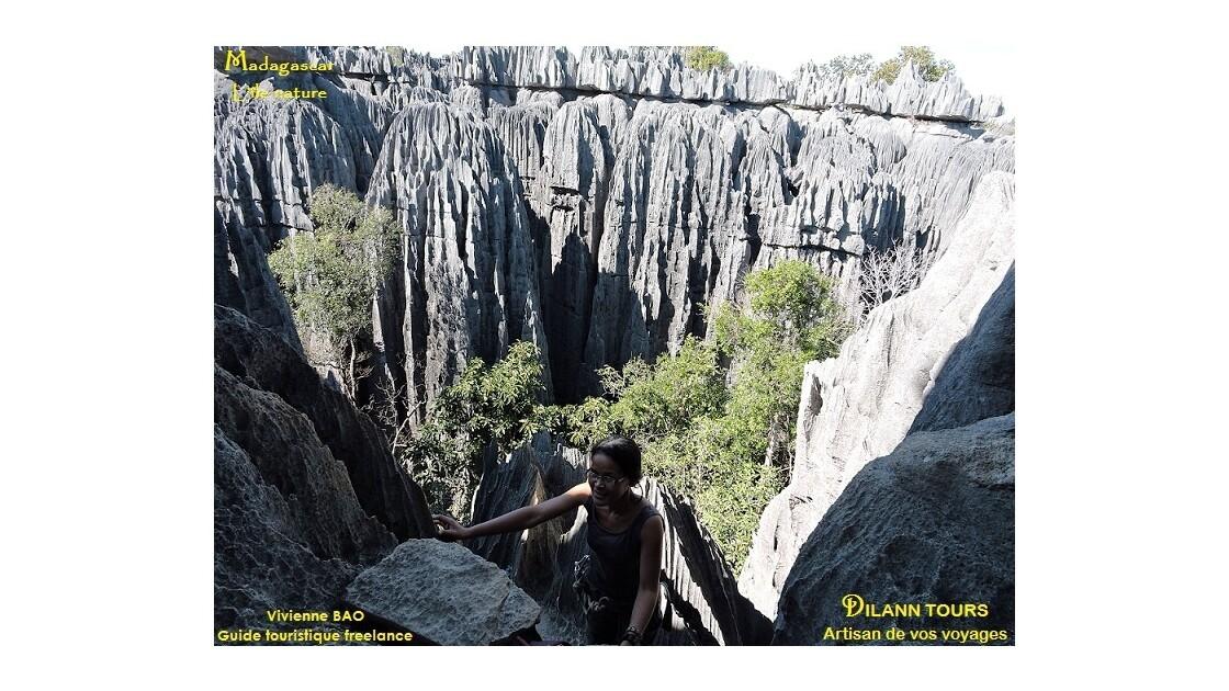 Les Tsingy de Bemaraha - The Tsingy of Bemaraha