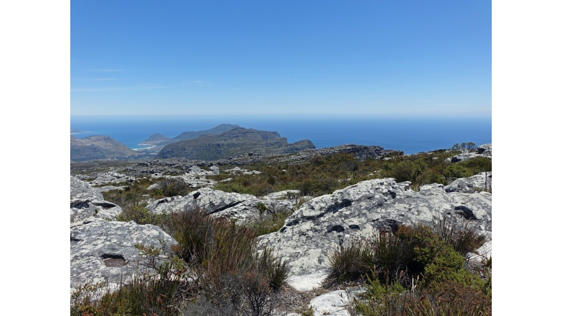 Afrique du Sud Cape Town sur Table Mountain