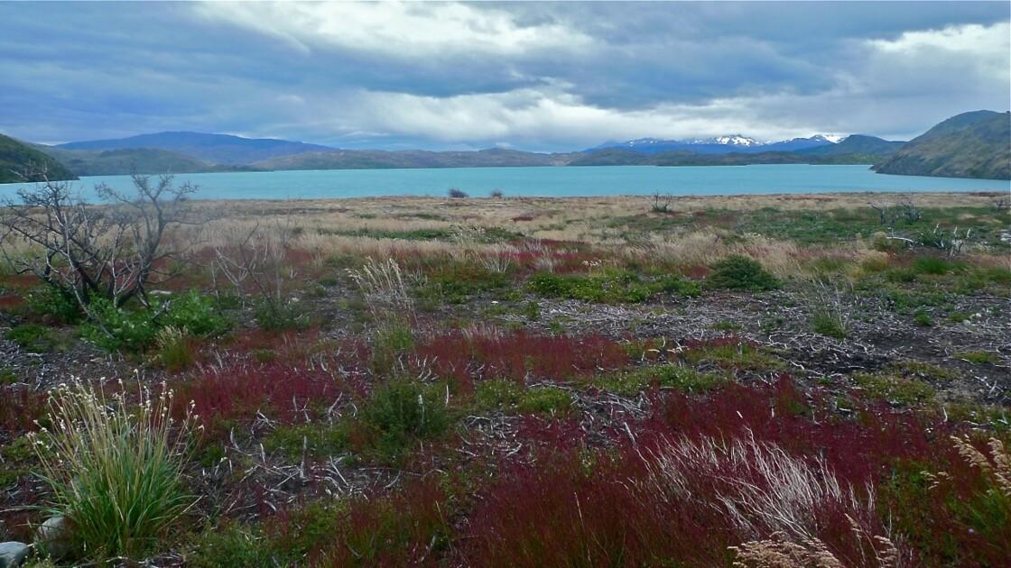 Lac grey, Torres del Paine en Patagonie Chilienne