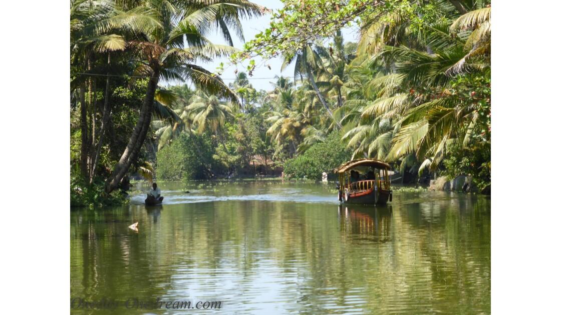backwaters au Kerala