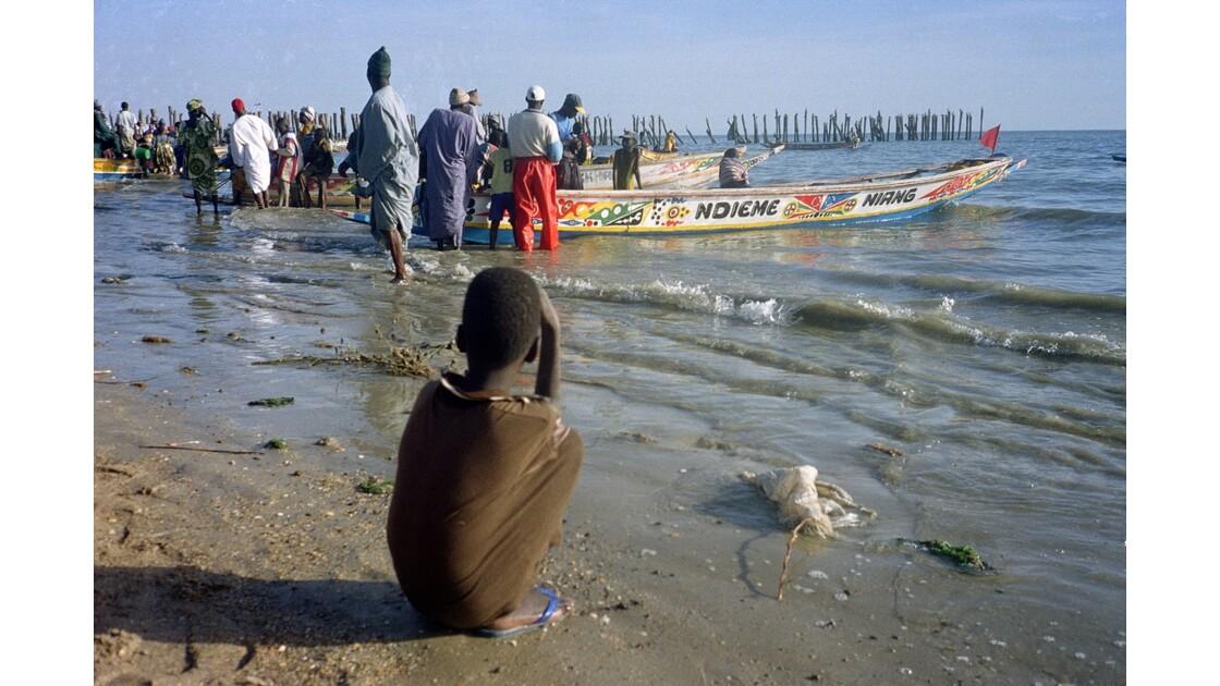 Sénégal M'Bour Retour de pêche 2