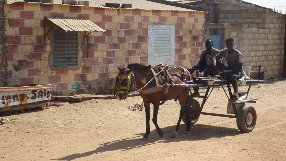 Sénégal Saly 2