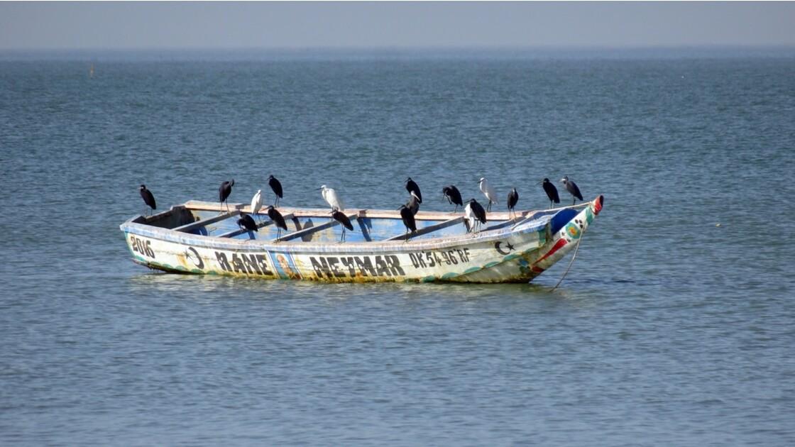 Sénégal entre Saly et Mbour Embarqués 1