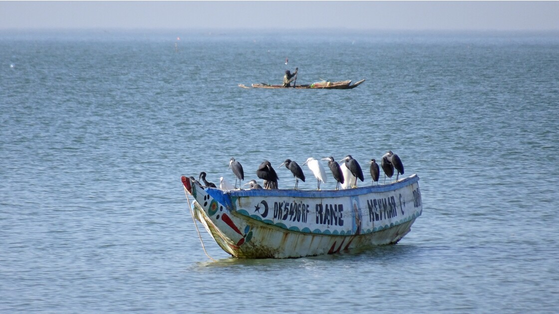 Sénégal entre Saly et Mbour Embarqués 3