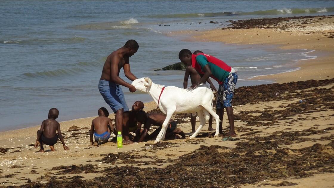 Sénégal entre Saly et Mbour Toilette 1