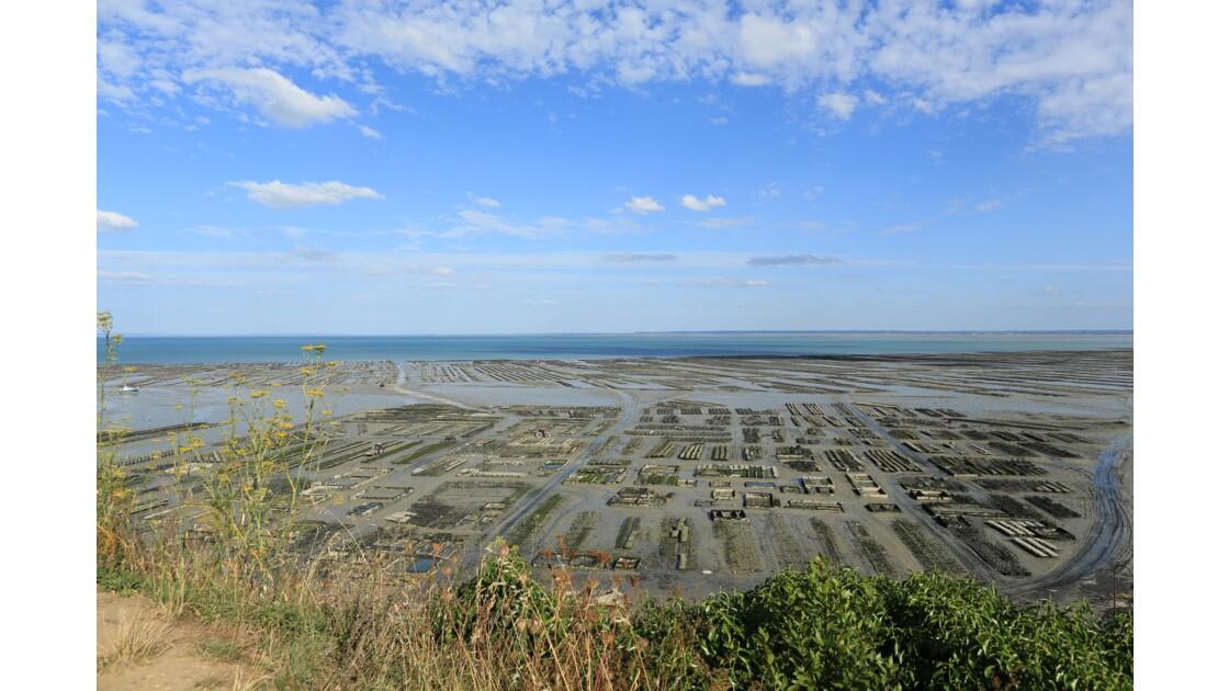 Baie de Cancale à marée basse