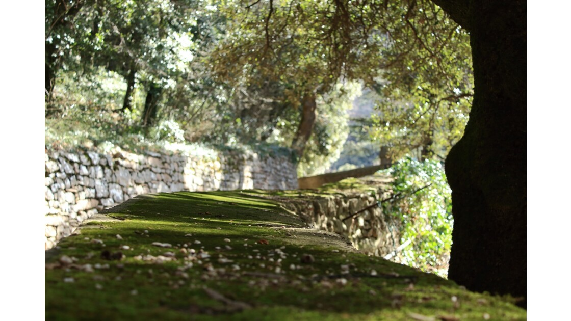 Le chemin de San Francesco