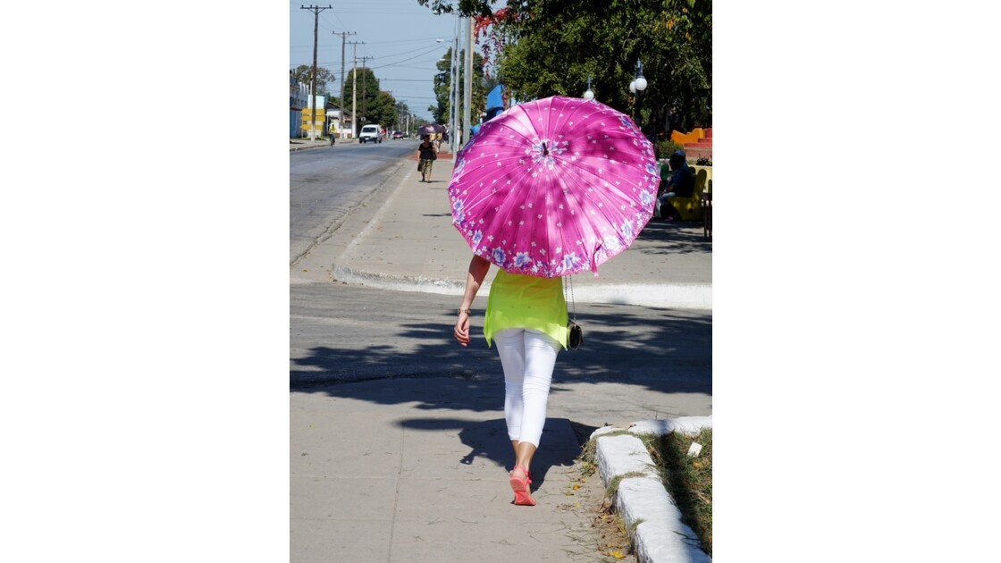 Cuba Florida une histoire d'ombrelle 1