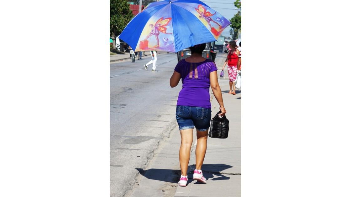 Cuba Florida une histoire d'ombrelle 2