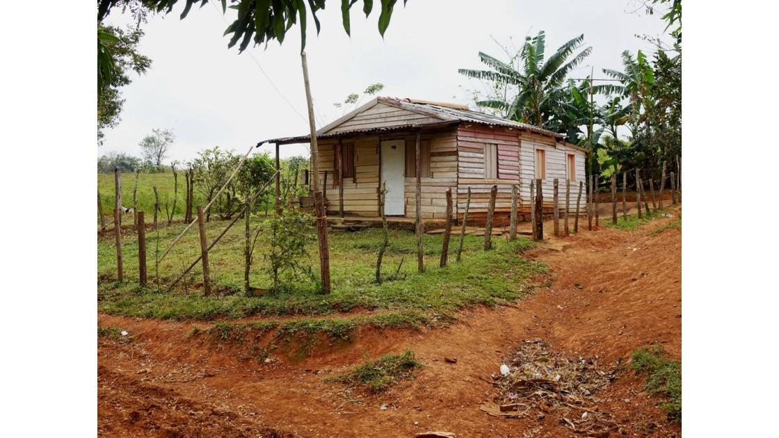 Cuba Vinales A travers les champs de tabac 6