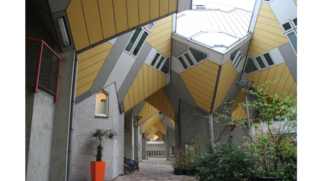 maisons cubes de Rotterdam, près du vieux port