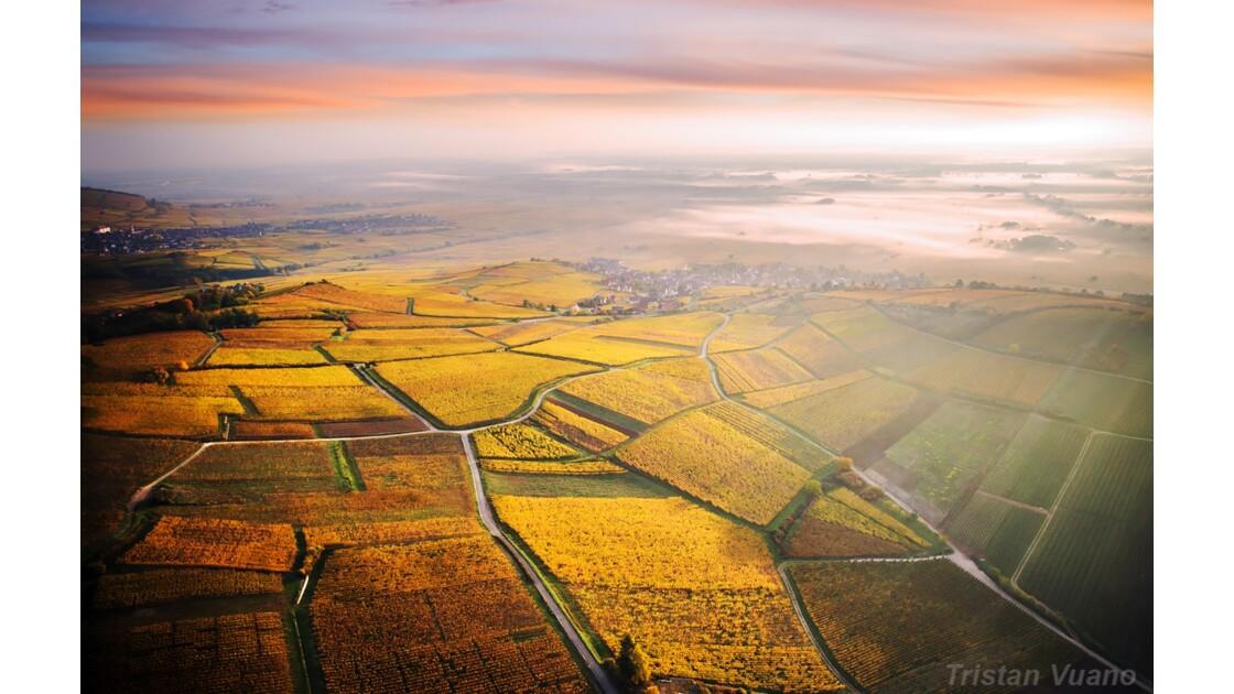 Lever de soleil sur la Route des Vins d'Alsace