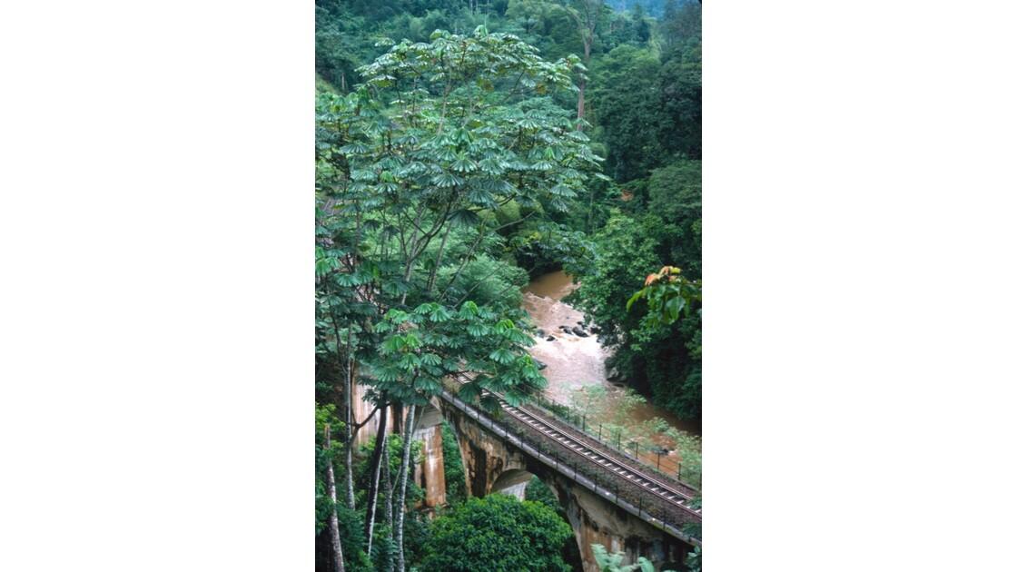 Congo 70 CFCO Viaduc dans le Mayombe 2