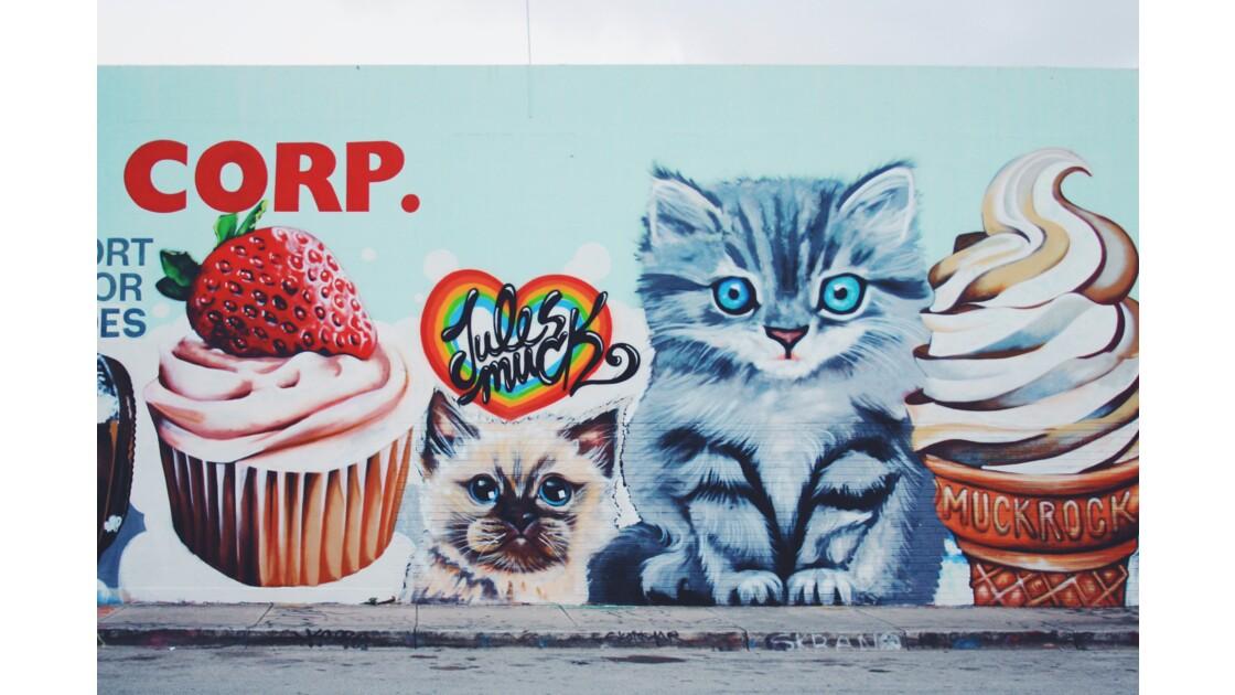 Des cupcakes et des chatons