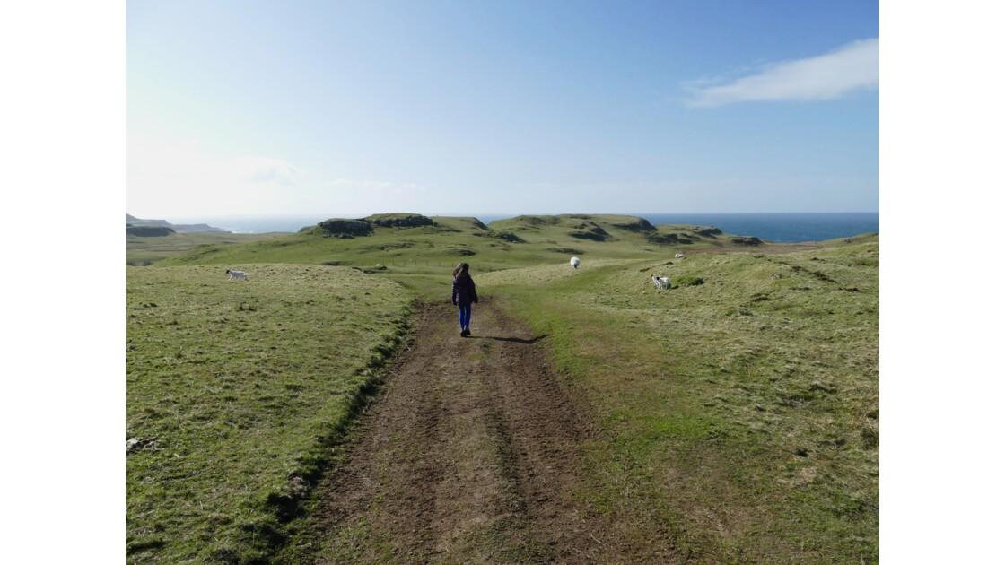 Balade ordinaire sur l'île de Mull