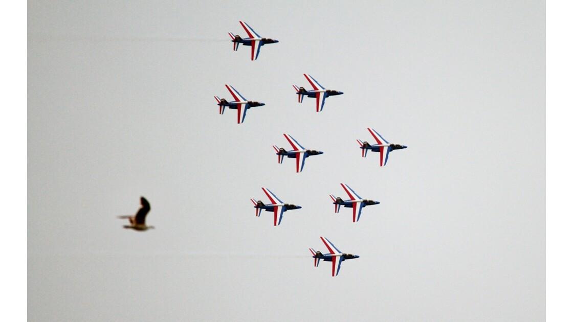 Patrouille de France 2016