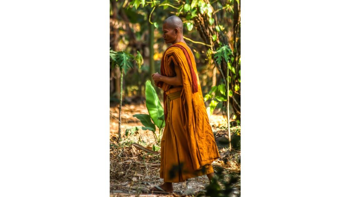 Un bonze dans les jardins d'Angkor