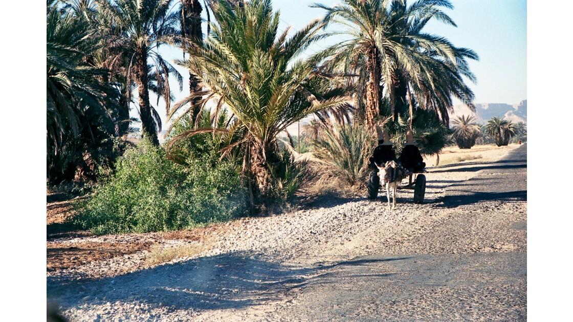 Vallée de l'Hadramaout