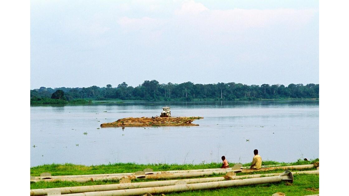 Congo 70 Impfondo Pousseur de billes de bois 2