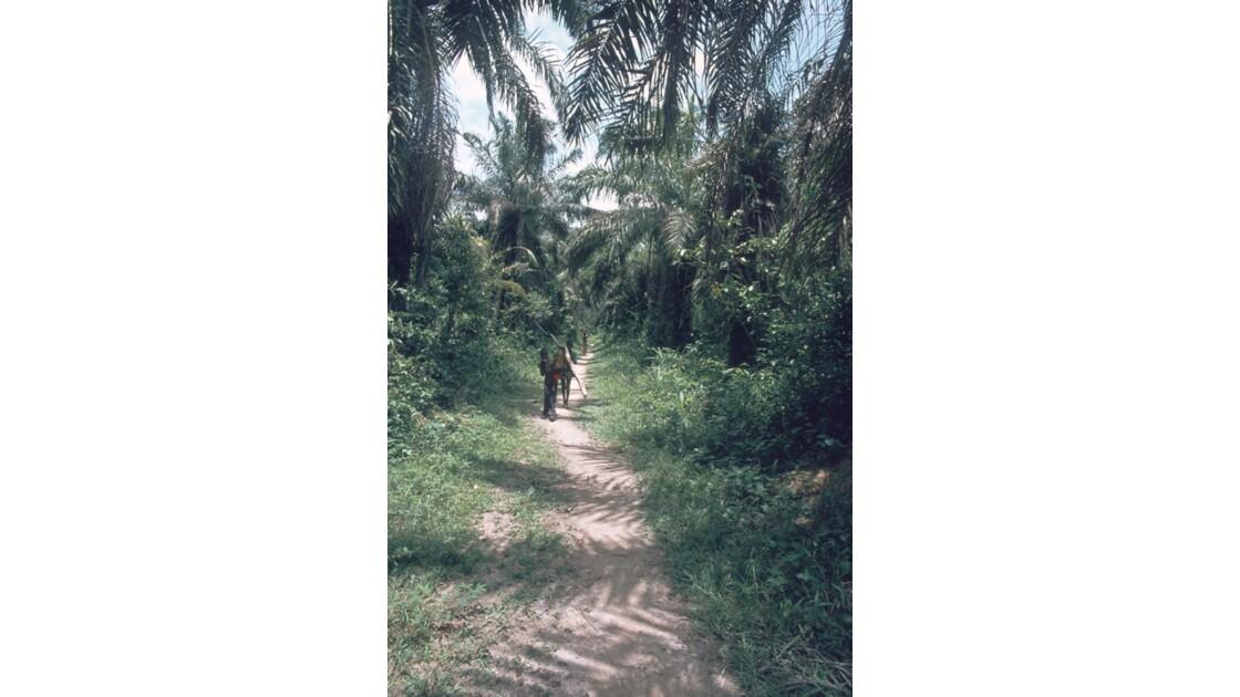 Congo 70  Autour de Dongou 2
