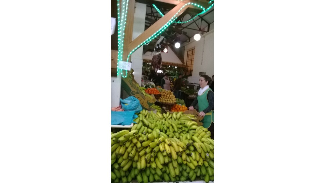 Marche de Funchal ( Madere)