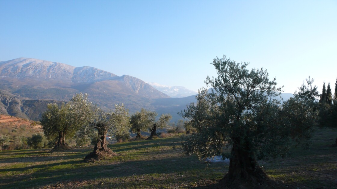 Quentar, sweet, sweet andalousian village