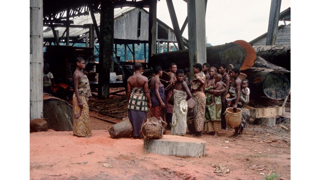 Congo 70 MBirou Transport de sciure par les femmes pygmées 2